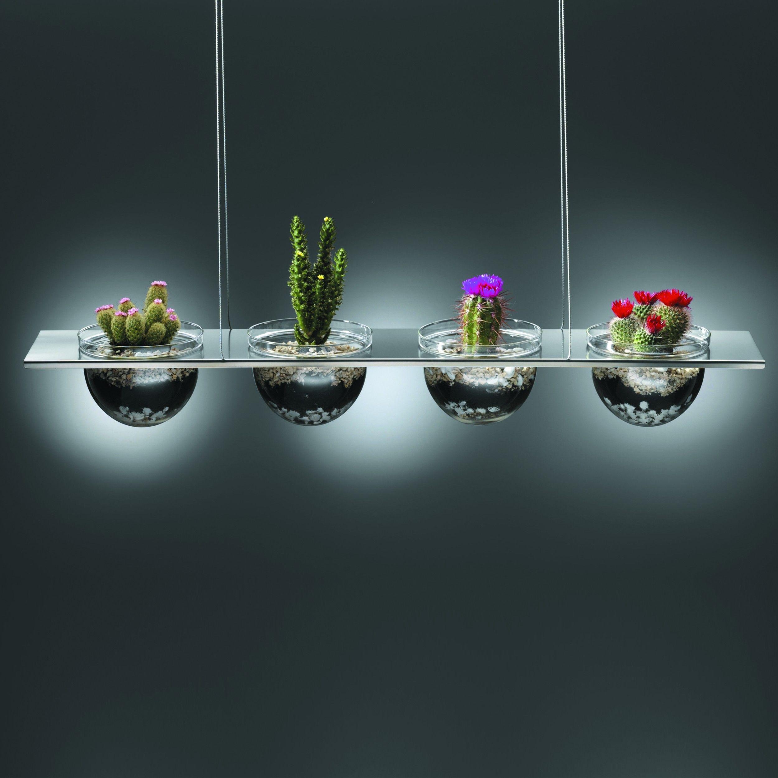 mono quartett h ngedeko 4 fach incl stahlseil shop. Black Bedroom Furniture Sets. Home Design Ideas