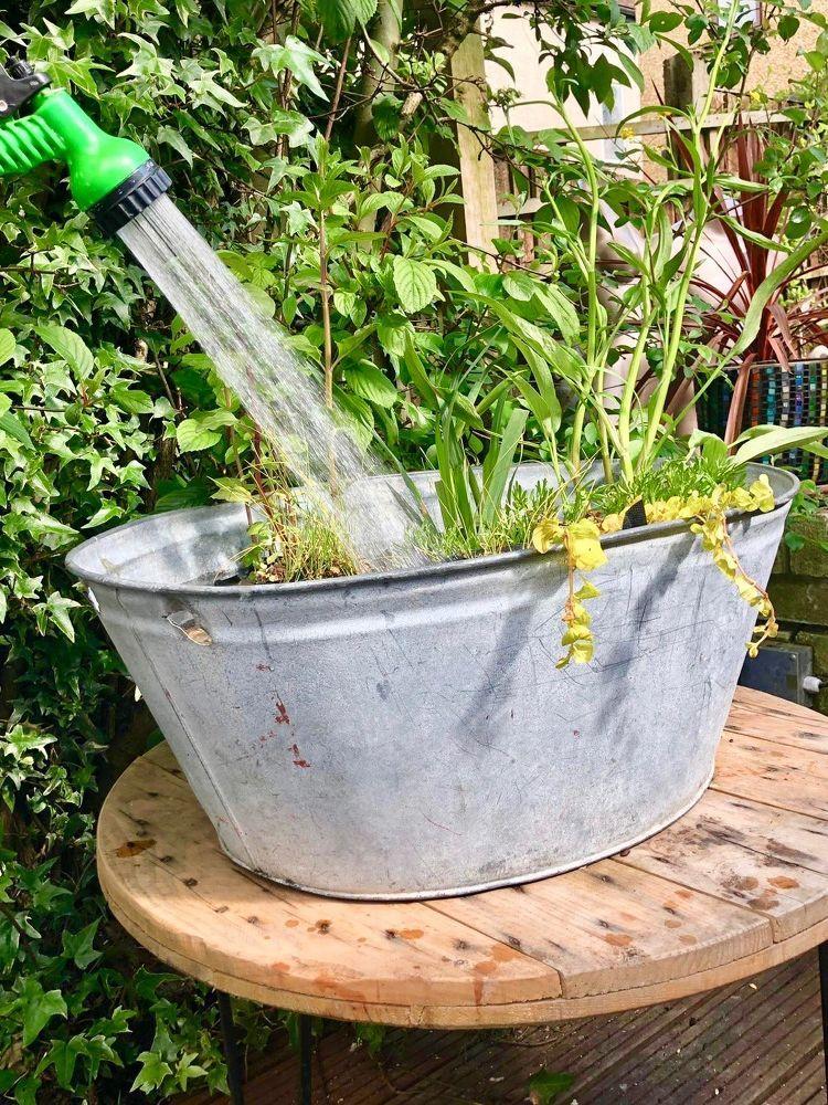 How to Make a Cute Little DIY Old Tub Pond Diy garden