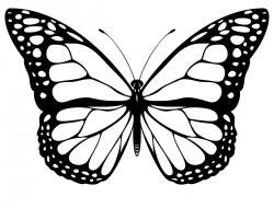 butterfly clipart black and white google search smart rh pinterest com butterfly clipart black and white outline butterflies clipart black and white