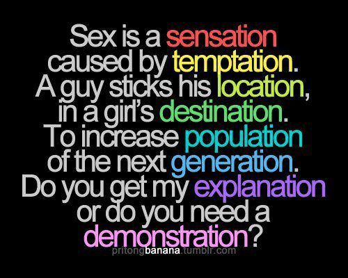 Sex is a sensation caused by temptation. A guy sticks his location in a  girl's destination. To increase population of the next generation.