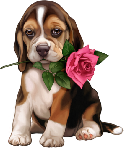 """Photo of Photo from album """"Puppies and dogs"""" on Yandex.Disk"""