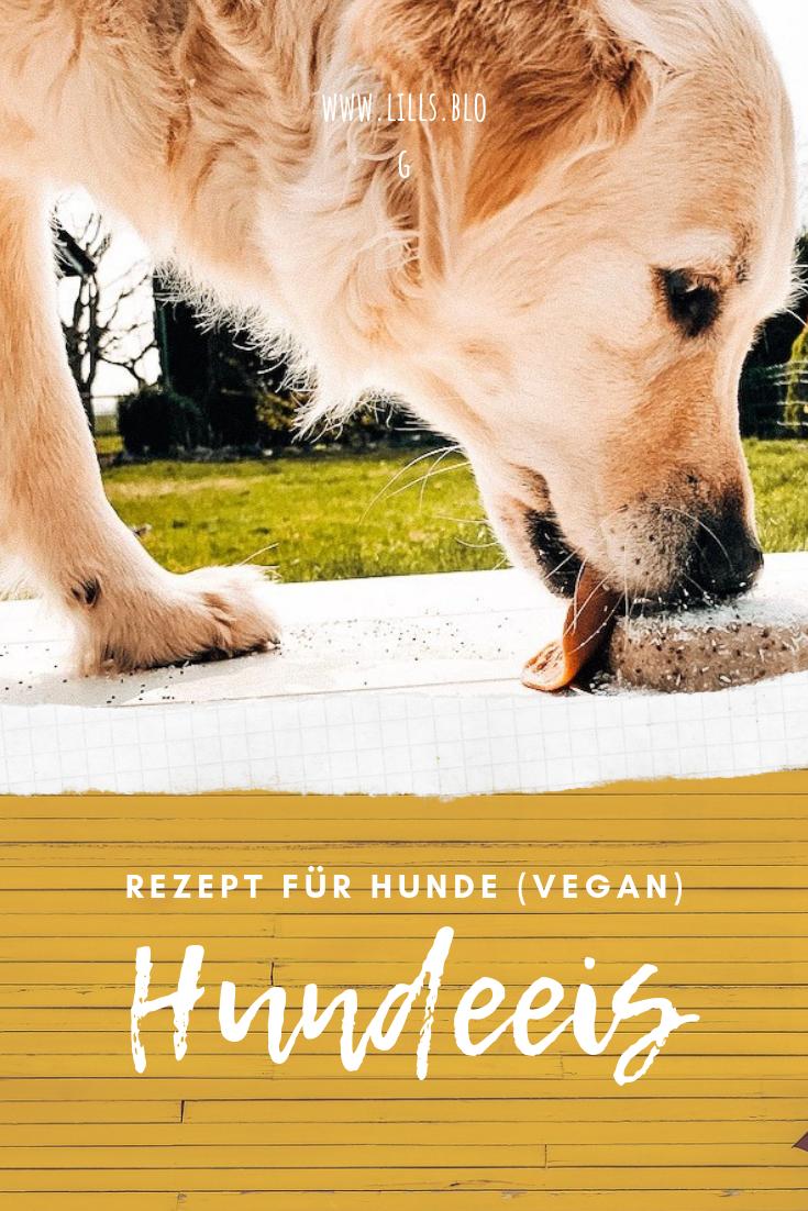 Rezept Hundeeis Yellow Mellowness Vegan Eis Fur Hunde Hunde Hunde Snacks