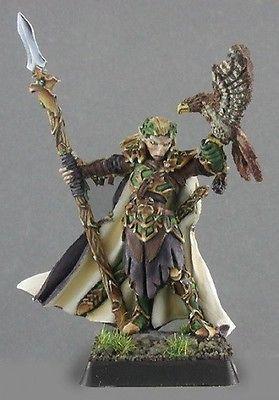 Wood Elf King Reaper Miniatures Dark Heaven Legends D&D RPG Ranger Fighter Melee