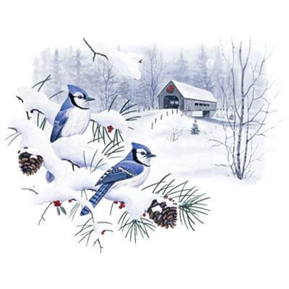 BLUE BIRD WOMEN TEE SHIRT T SM 3XL LONG SLEEVE TEE SHIRT PLUS WINTER CHRISTMAS