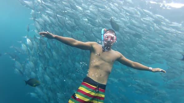 Person Swimming Among Shoal Of Jack Fish In Tulemben In Bali, Indonesia 1 by paul_prescott Person swimming among shoal of jack fish in tulemben in Bali, Indonesia.