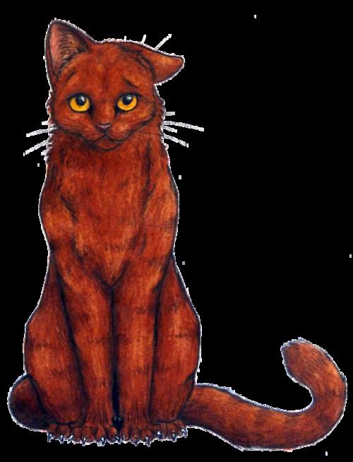 Výsledek obrázku pro warriors cats brackenfur