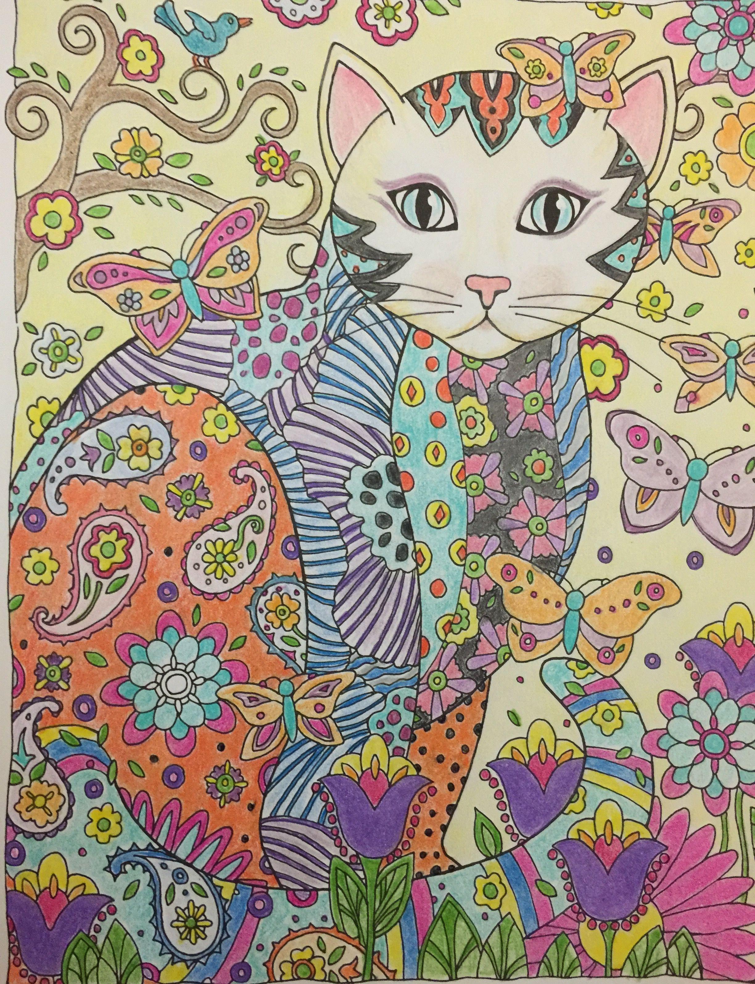 Pin de Sietske en ~Cats~   Pinterest   Fotografía de gatos, Arte ...