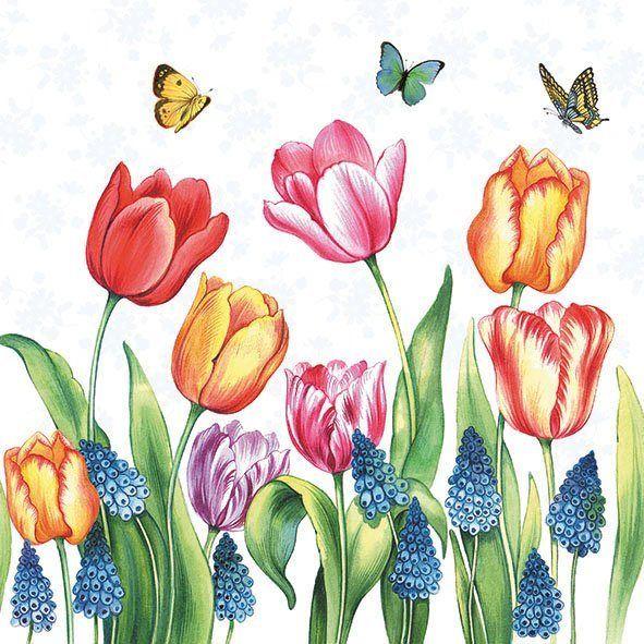 Ambiente Serviette 'Tulpen und Traubenhyazinthe'   OTTO