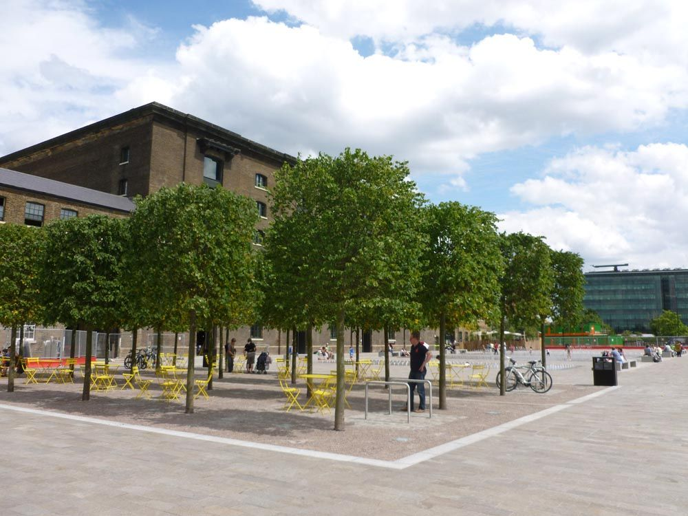 granary square trees  Google Search  civic square