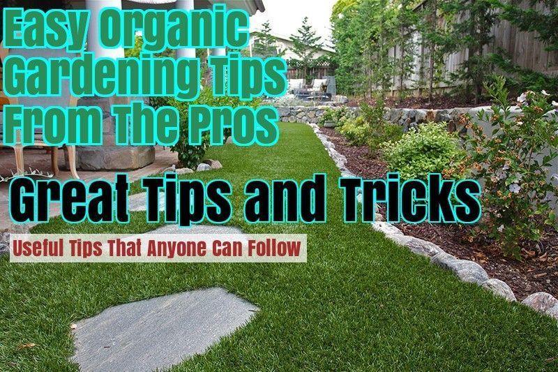 Gardening Organic Tomato Made Easy Growing Organic Tomatoes Organic Tomatoes Organic Gardening