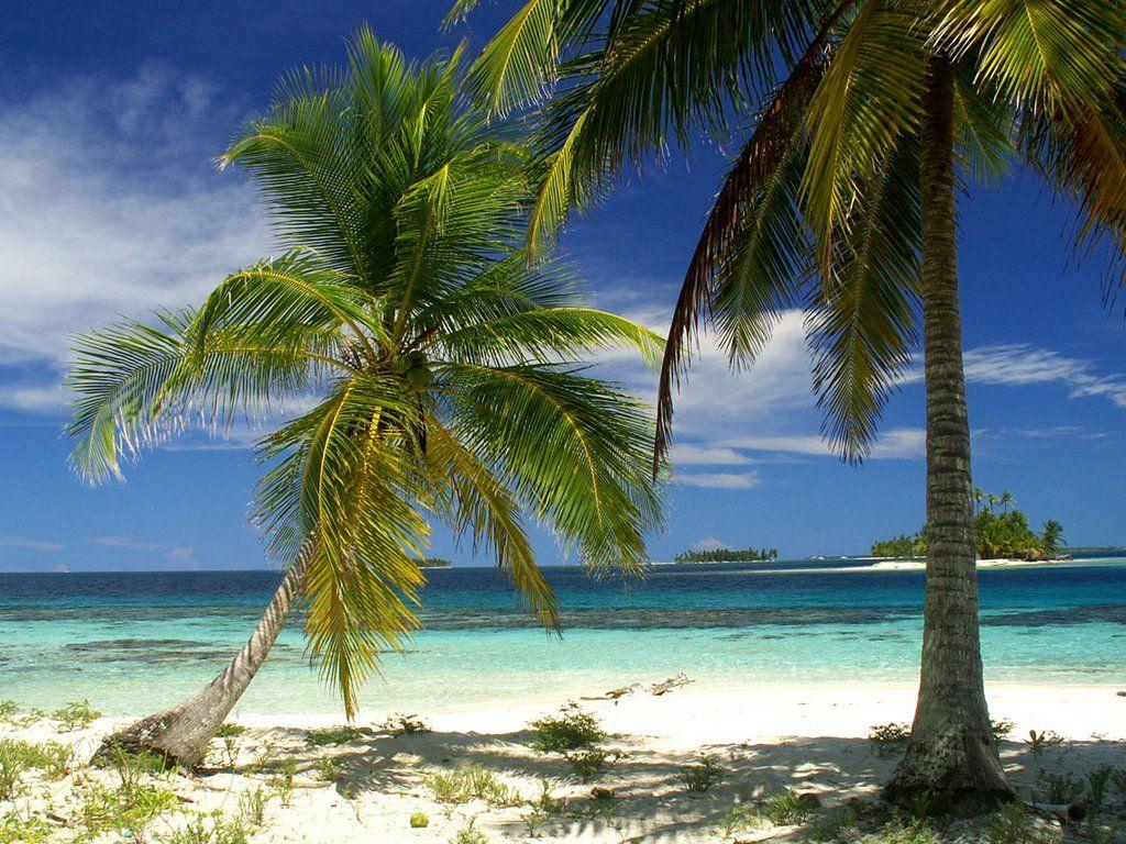 Panama honeymoon? Beautiful beaches, Tulum vacation, San