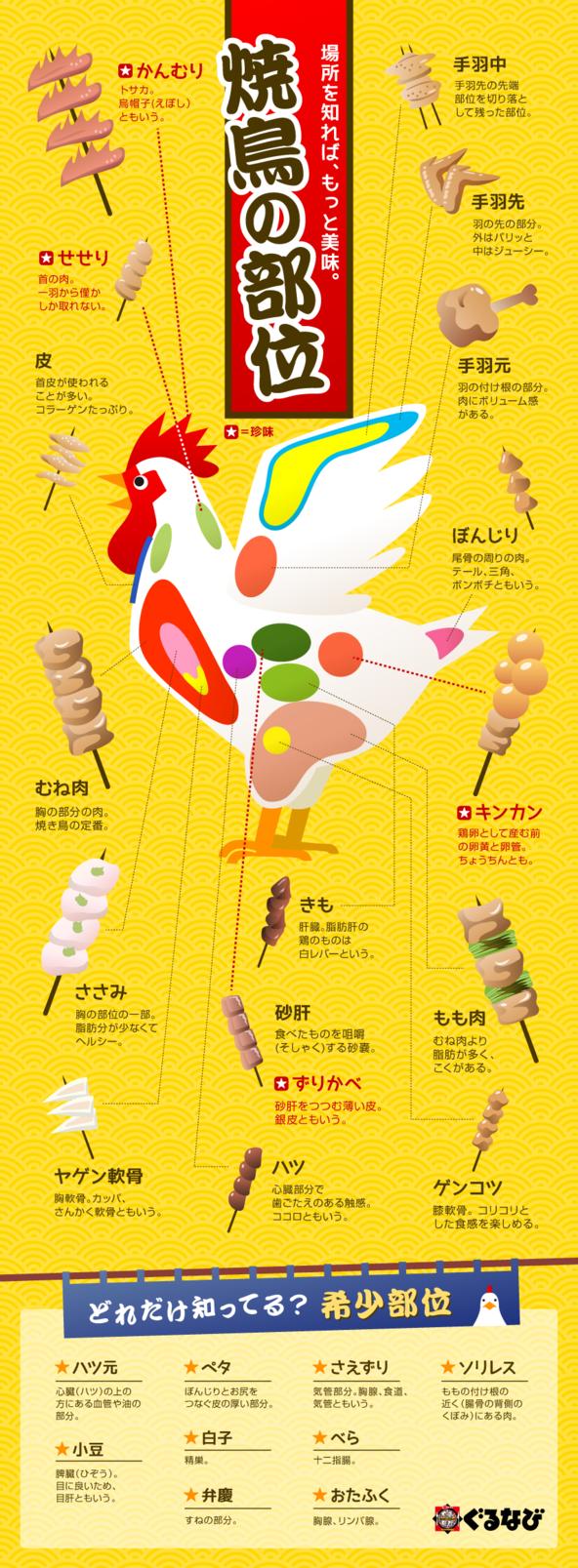 Visual graphics of Parts of the Yakiyotori. 焼き鳥と一言でいっても、その部位は様々。焼き鳥の部位について、もっと詳しくなってしまう・・・!?そんなインフォグラフィックです。