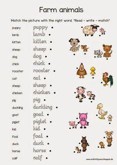 Farm animals Englisch grundschule, Englischunterricht