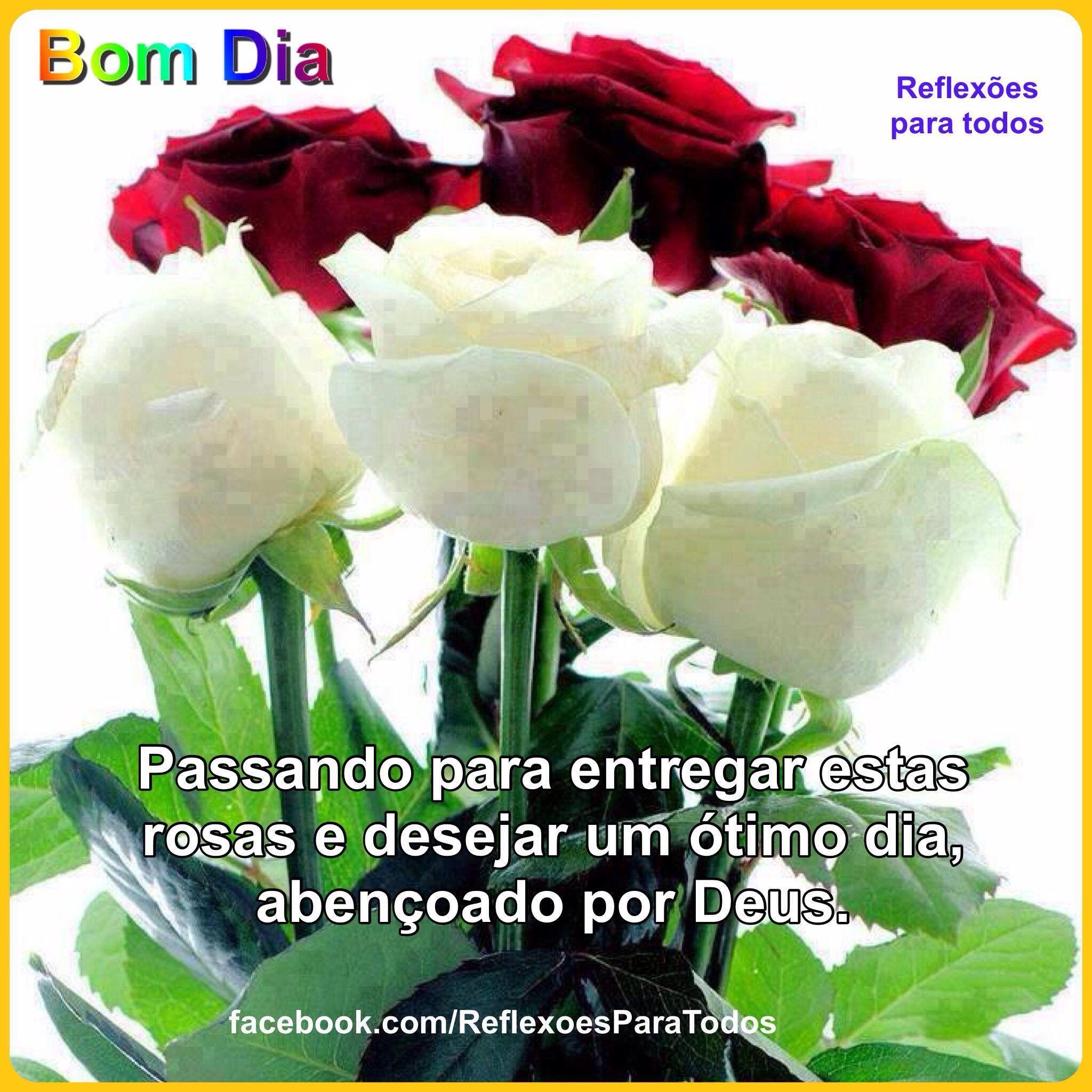 Bom Dia Acesse Esta Mensagem E A Reflexão Colha Mais Flores E
