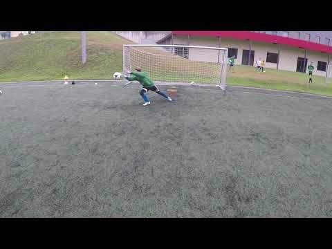 Football Goalkeeper Practice Video Downloadaulasopa