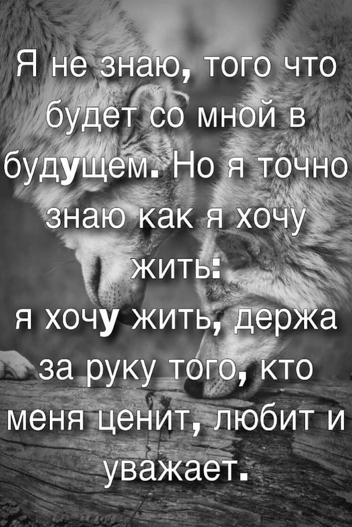 Pin By Rimmaromir On Citaty Brainy Quotes Cool Phrases Bible Quotes