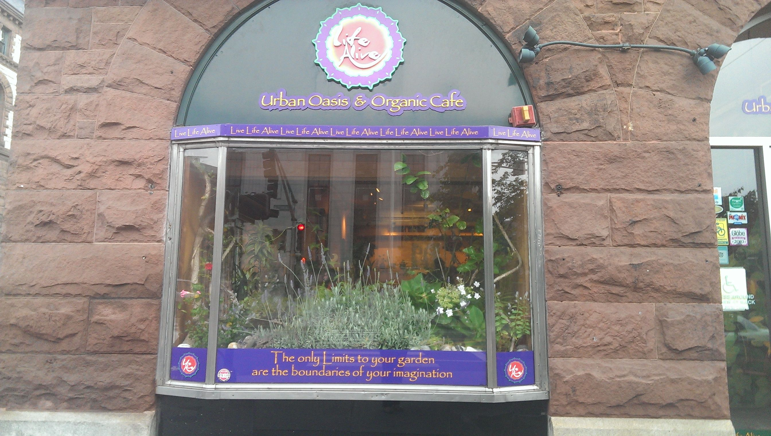 A street view of life alive cafe urban oasis organic