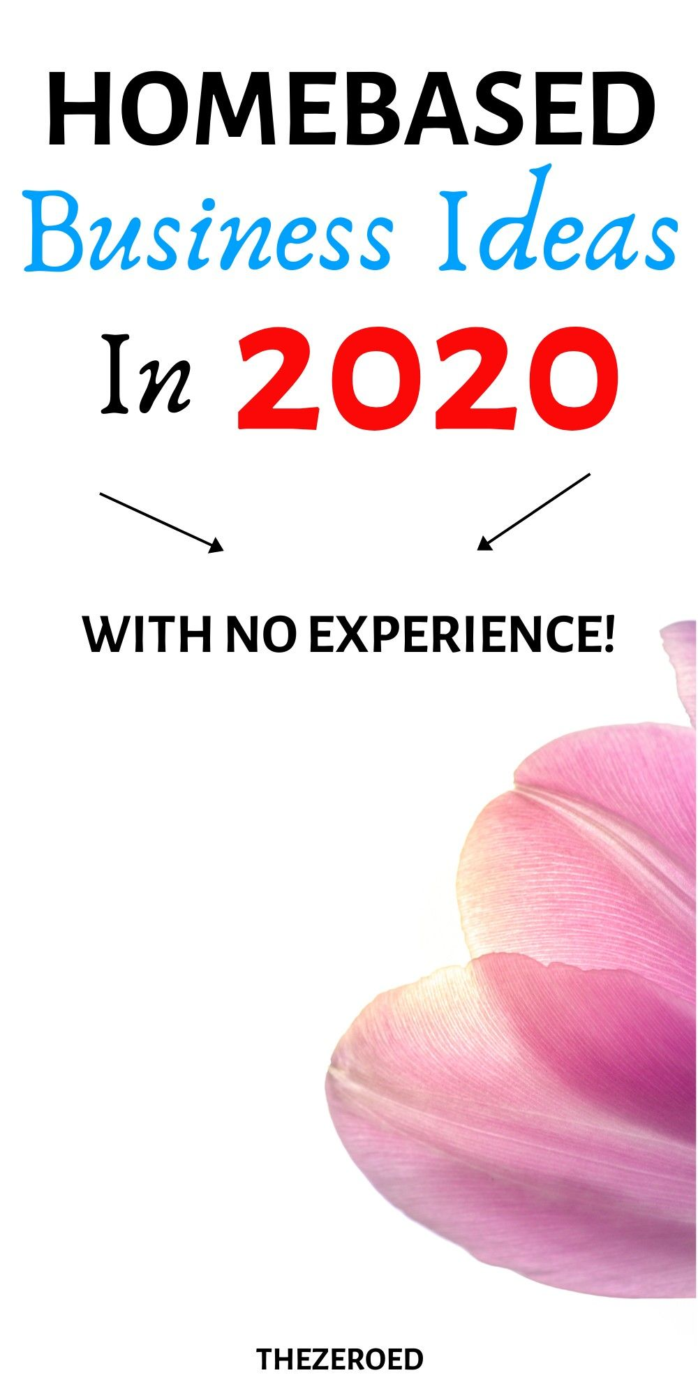 Homebased business ideas in 2020 with no experience in