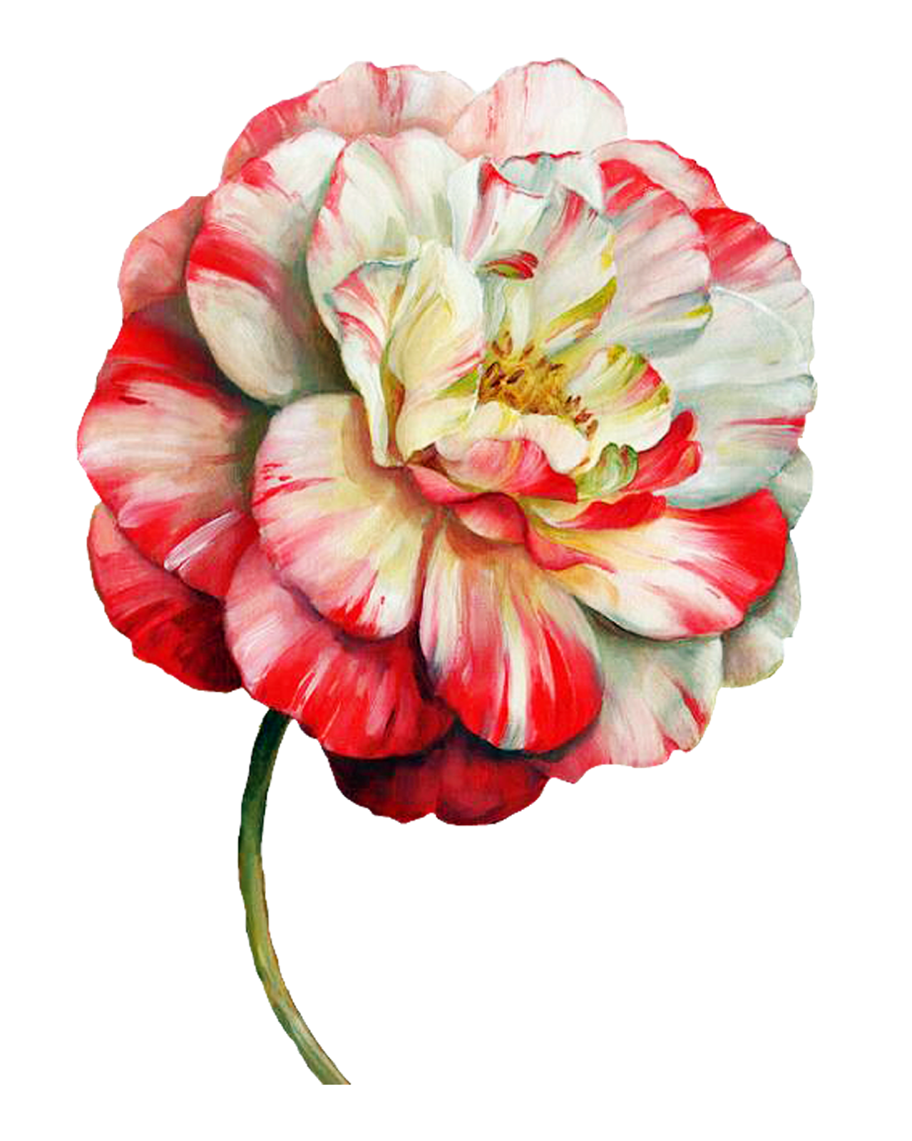 decoupage flower, flower painting, flower painting png