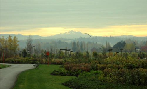 Loving Langley Living! So close to the country; but with all the conveniences of the city! This photo is taken just behind the Langley Costco and looks east to Mt Baker and the scenic Langley Farmlands!