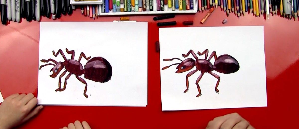How To Draw An Ant - Art For Kids Hub - | Pinterest
