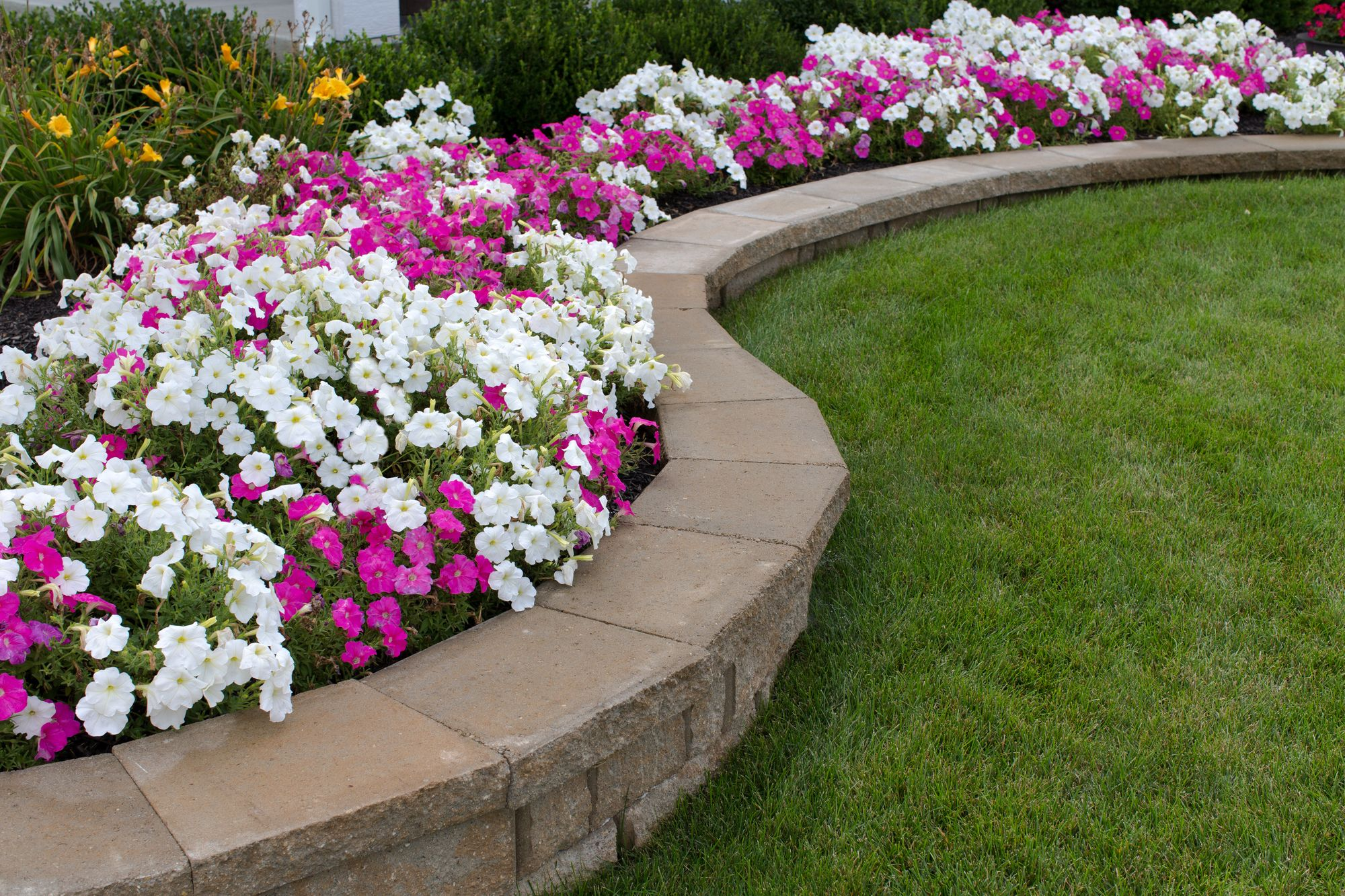 expert landscaping design  u0026 build solutions to change your house in friendswood tx and