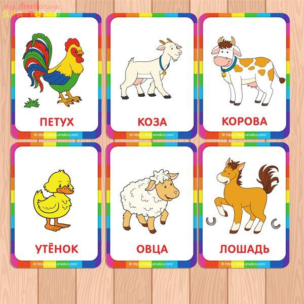 Картинки животные для карточек