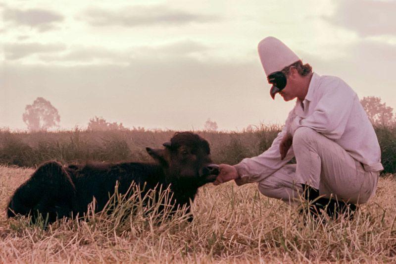 """""""Bella e perduta"""": Ein Büffel und der Wert des Wertlosen  Die Geschichten eines herrenlosen Palastes und eines verwaisten Büffels verwebt Pietro Marcello zu einer Ballade über die Verantwortungslosigkeit unserer Kultur: ein großartiger Film"""