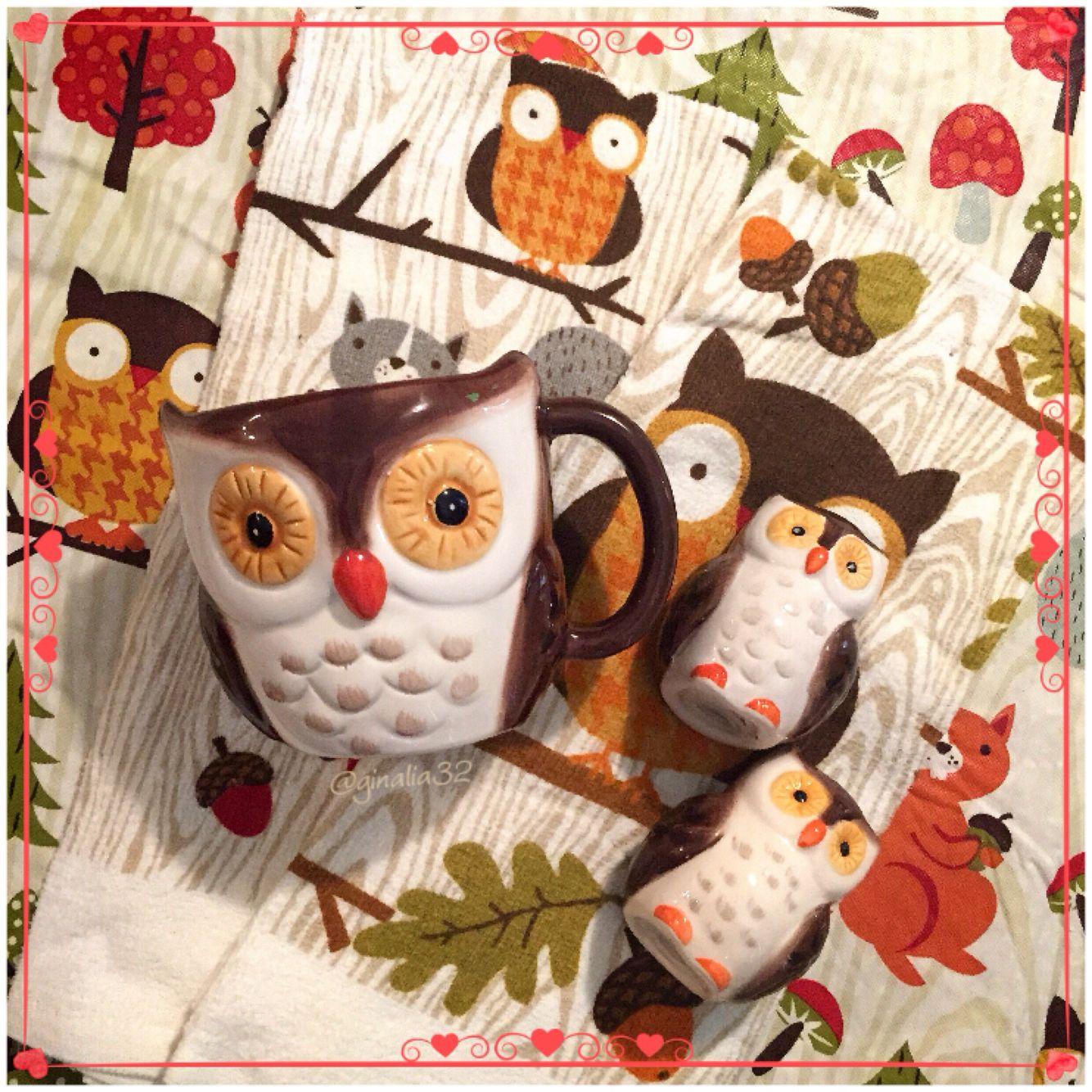 Cute Fall Owl Decor I Picked Up At Wal Mart...tablecloth,