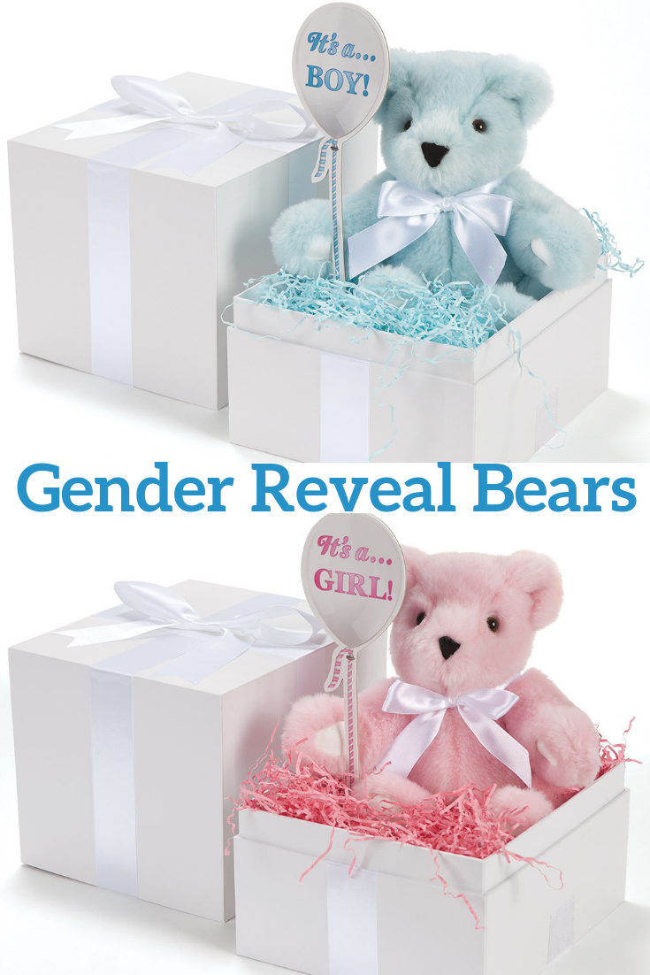 New Unique Gender Reveal Idea Bears Gender Reveal Gifts Baby Shower Reveal Ideas Baby Gender Reveal Party