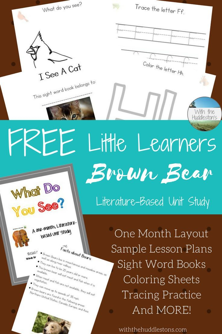 Brown Bear Brown Bear, What Do You See Literature Study for ...