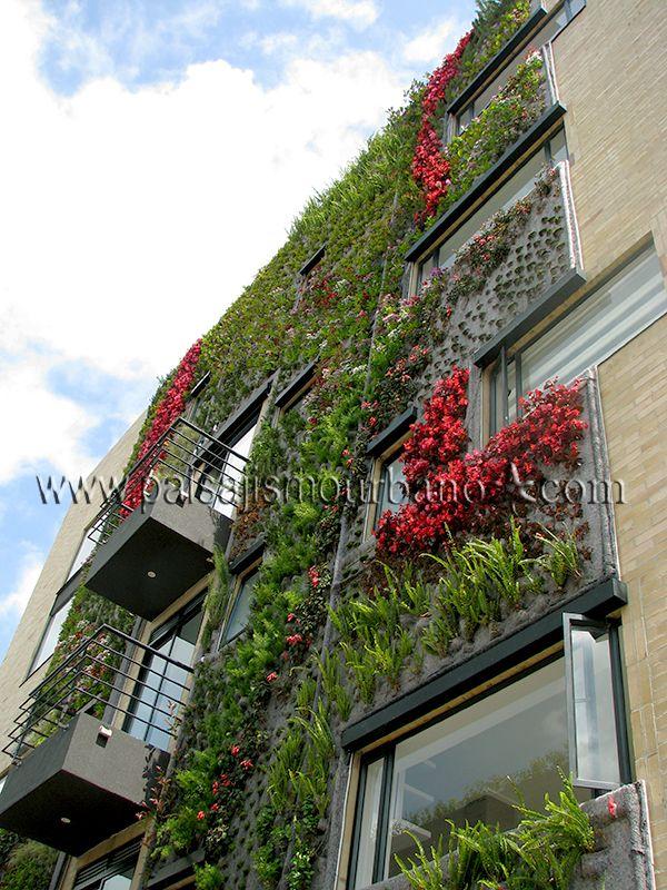 fachada vegetal en el ecohouse de bogot colombia On empresas de jardines verticales en bogota