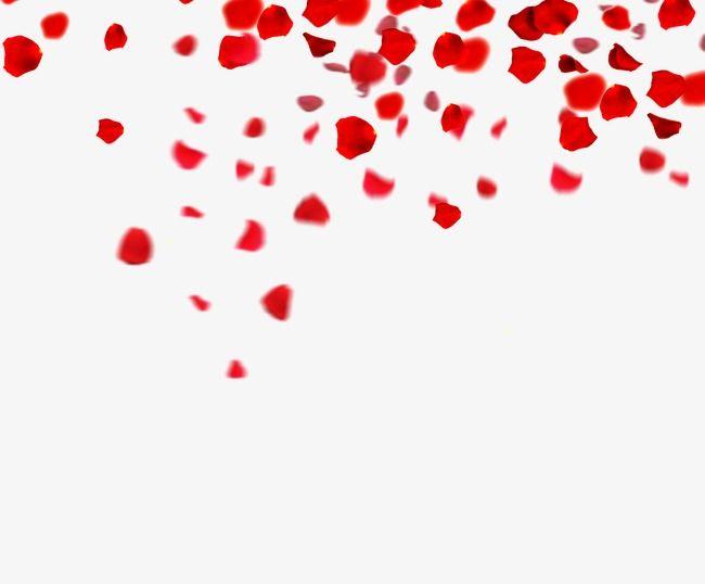 Rose petals floating material, Rose, Petal, Float PNG Image PNG