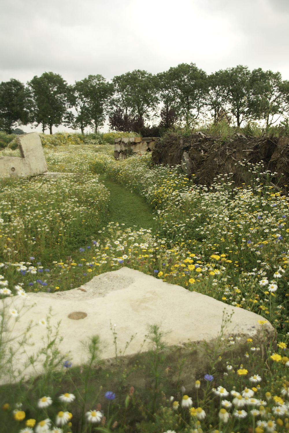 De klaverweide waar grote betonelementen tussen de bloemen oprijzen