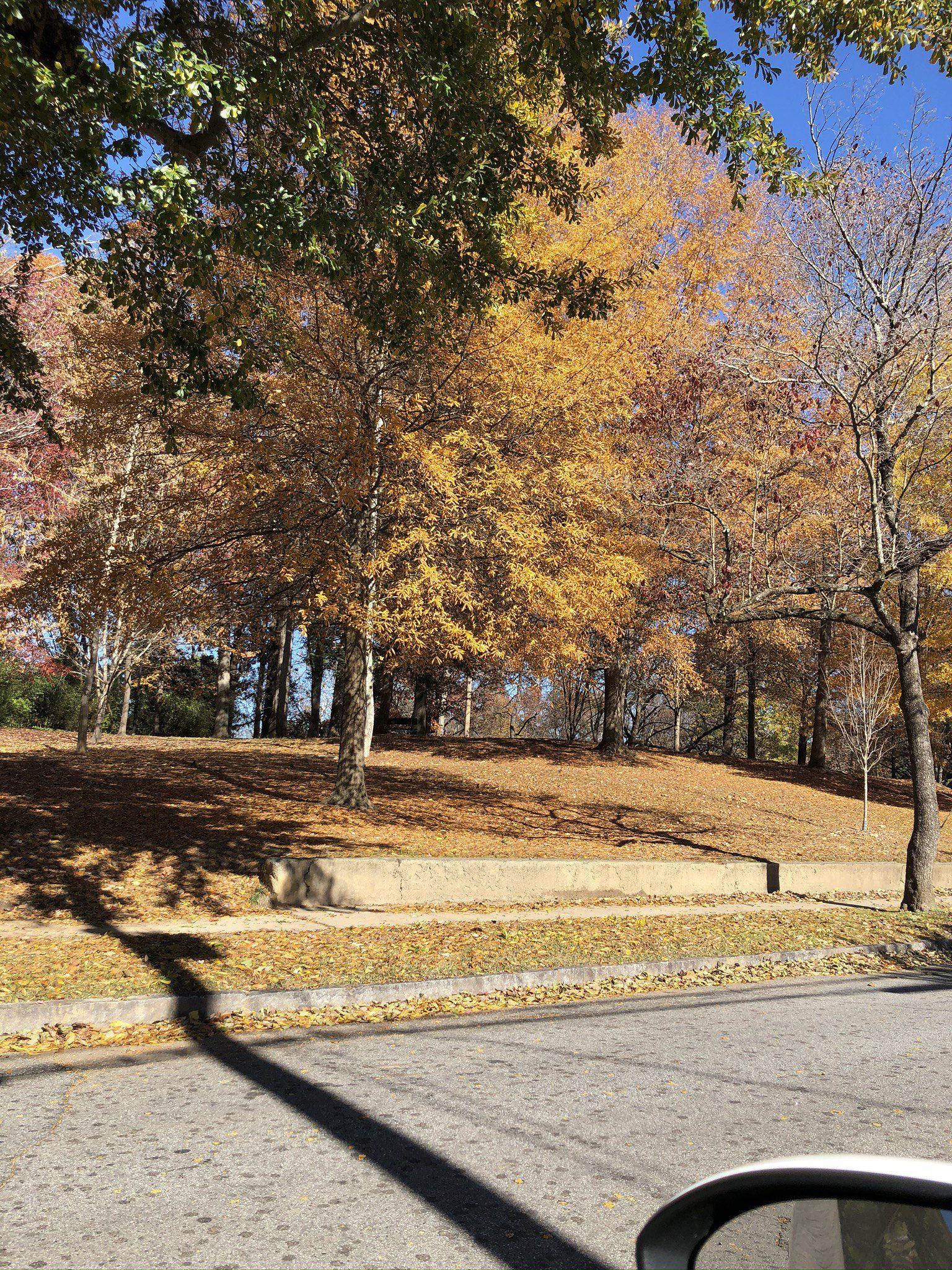Sydney Marcus public park in Atlanta, N.W. near EMORY