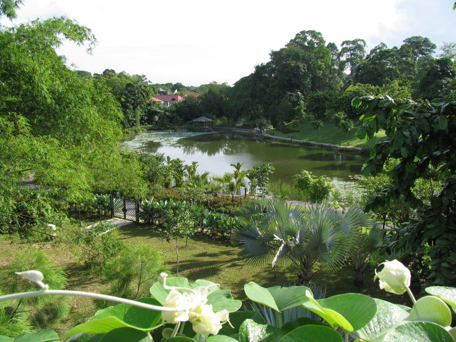 Singapore Botanical Gardens A Visit Of Wondrous Nature Gardens Of The World Singapore Botanic Gardens Singapore Garden