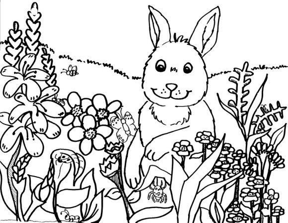 coloring pages printable spring bunny | Kids Crafts | Pinterest