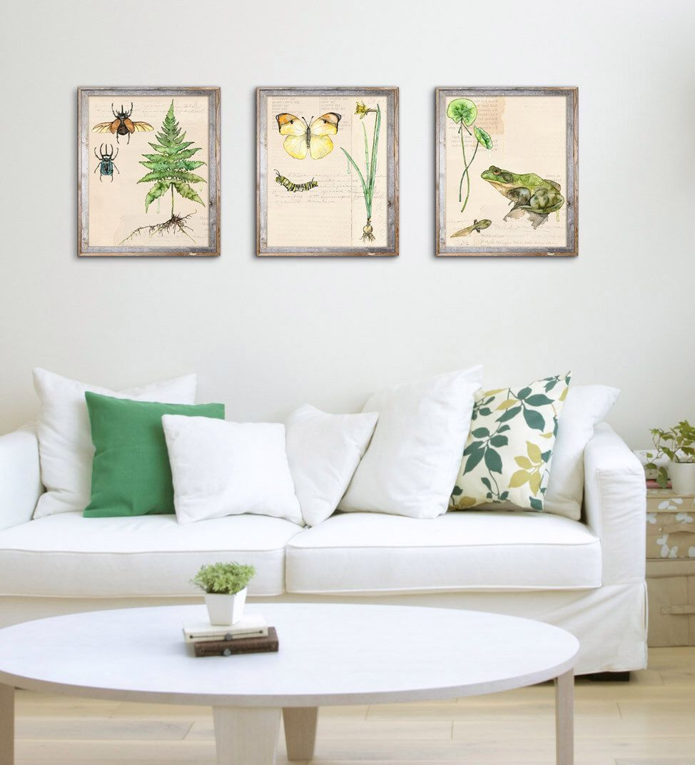 """Nature Print Set of 3 - Painting Series """"Nature Collection"""", Watercolor Prints, Botanical Print, Wall Art, Home Decor, Fern Print, Print Set by TheColorfulCatStudio on Etsy https://www.etsy.com/listing/472845751/nature-print-set-of-3-painting-series"""