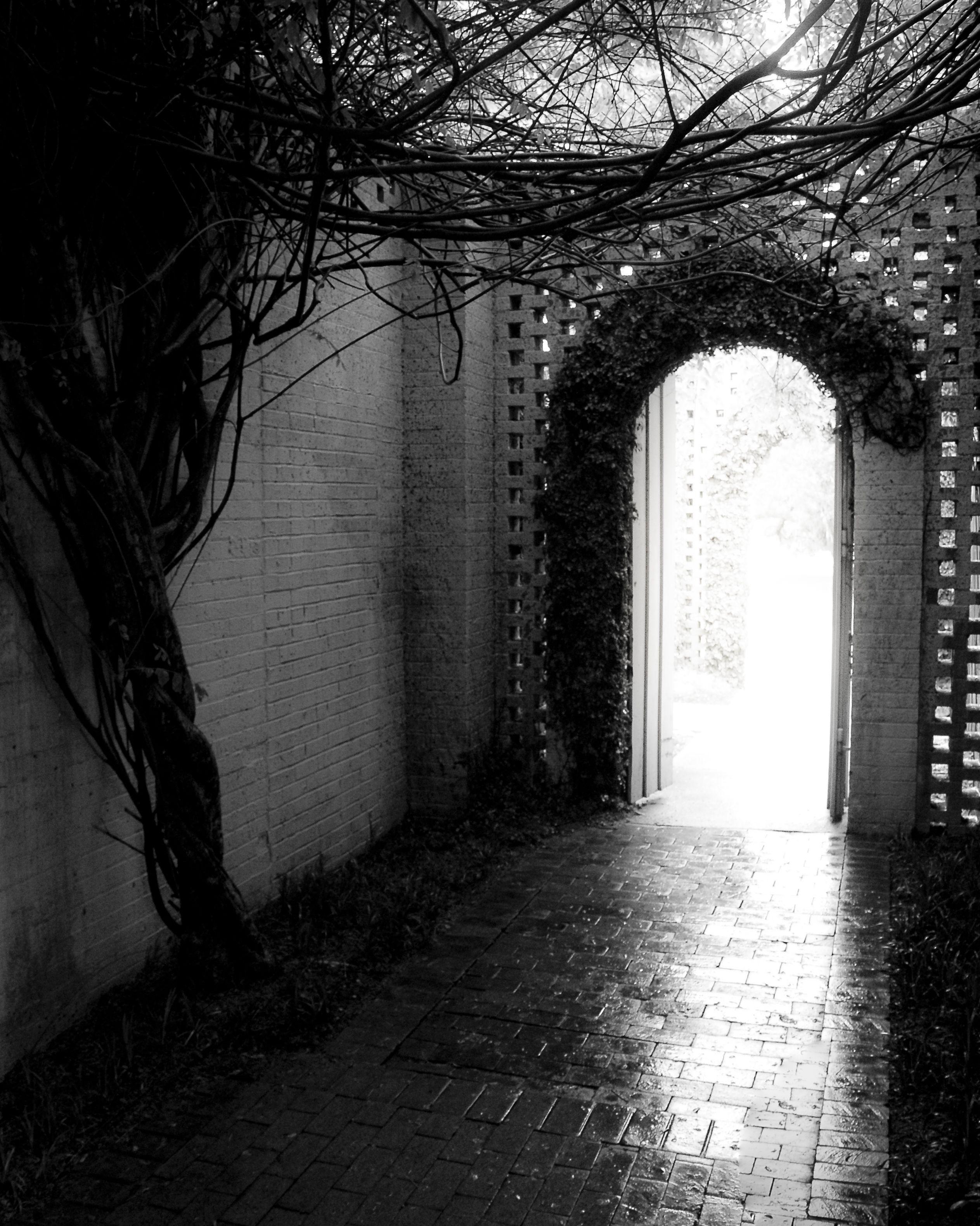 Angie Brown Brookgreen Gardens Sc Photos I Make