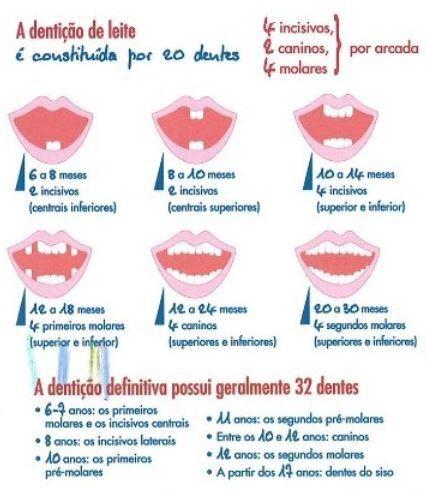 Denticao De Leite Denticao Dente De Leite E Escova De Dente