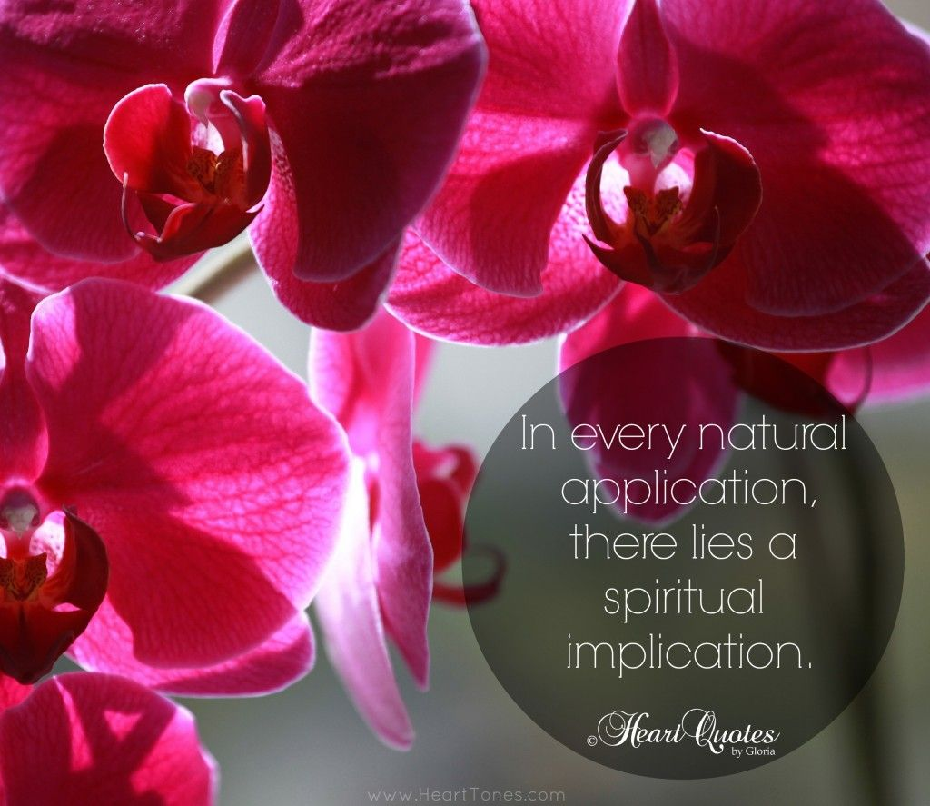 Heart quote u spiritual implication heart quotes pinterest