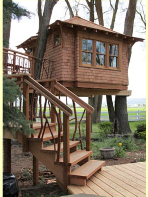 Pin By Dennis Walsak On Tree Houses Tree House Cool Tree Houses Woodland House