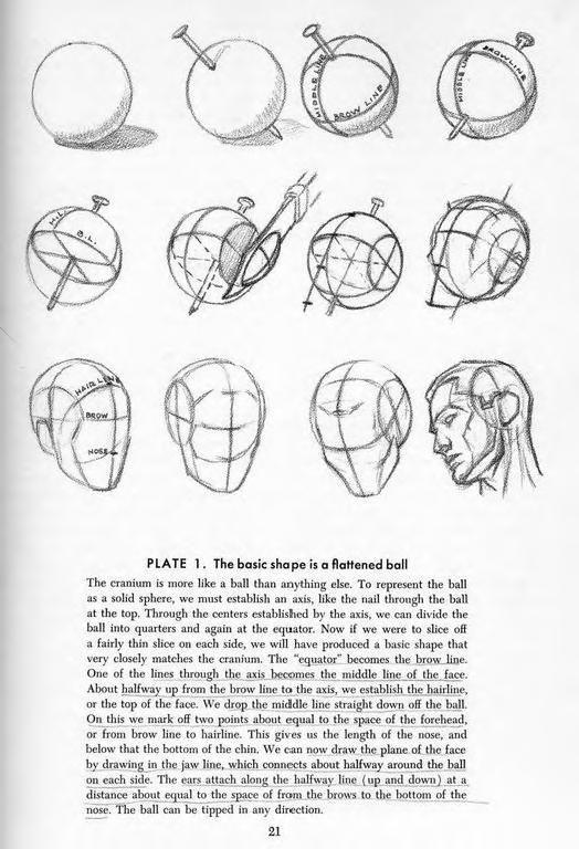 1956 Andrew Loomis Drawing The Head Hands Human Anatomy