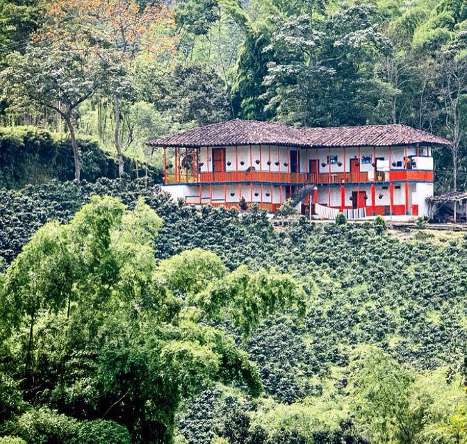 Finca típica del paisaje cafetero colombiano