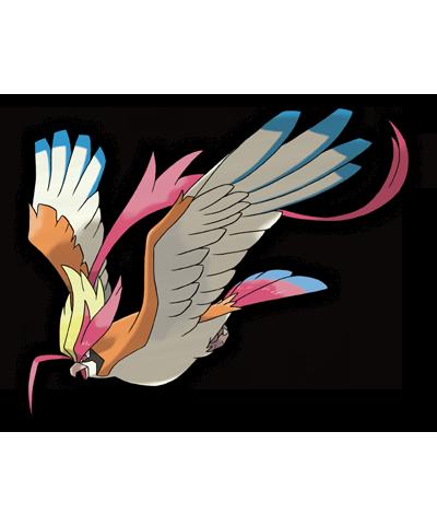 Mega Pidgeot Pokemon Mega Pidgeot Pokemon Rojo Fuego Y - claydol human roblox