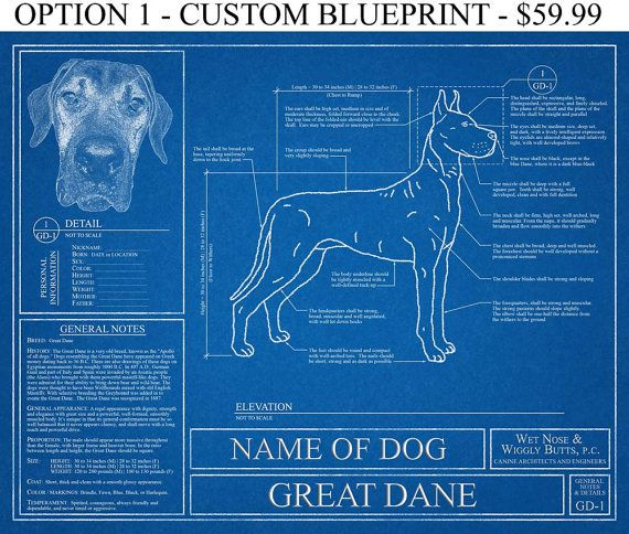 Personalized great dane blueprint great dane art great dane wall personalized great dane blueprint great dane art great dane wall art great malvernweather Images