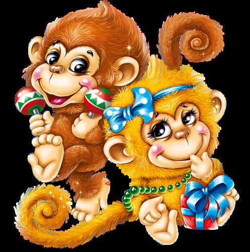 красивые открытки с обезьянами две недели можно