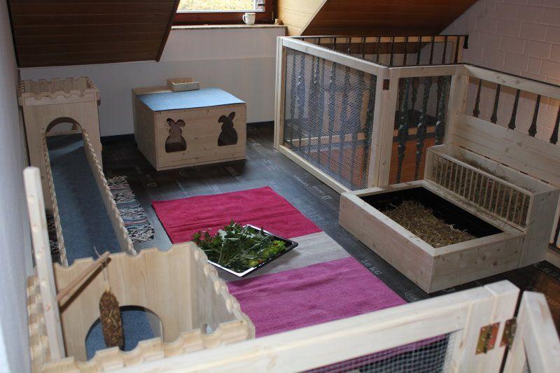Gehegebilder Gehege Tierheim Kaninchen
