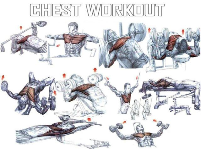 Chest Workout | Muscle and Fitness | Pinterest | Chest workouts ...
