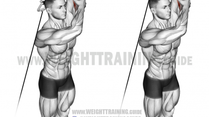 cable overhead tricep extension single arm